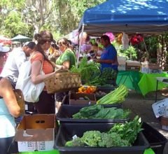 Old City Farmers Market St Augustine