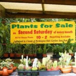 Washington Oaks Garden State Park Plant Sale